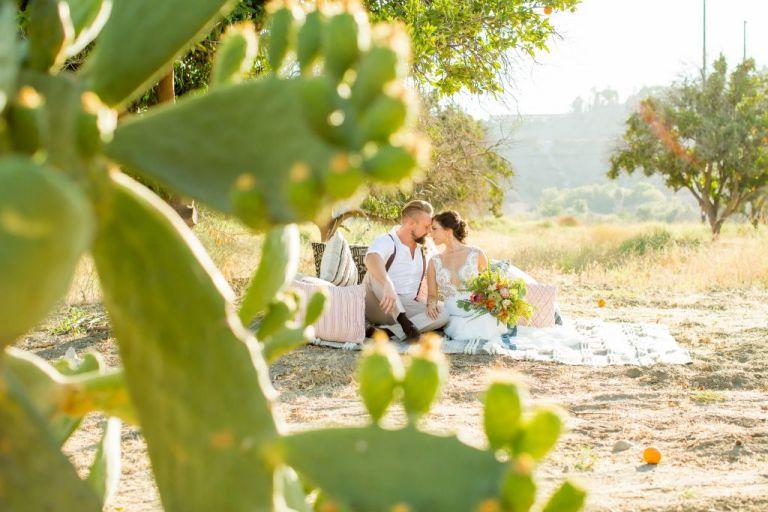 African Safari Wedding Planner